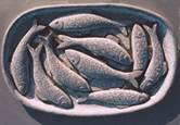 Bowl of Fish